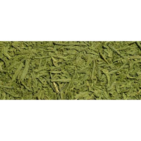Matcha Sencha - Organic