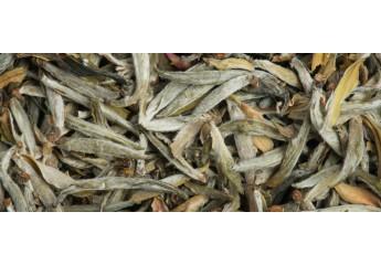 Thé blanc des Fées 2018