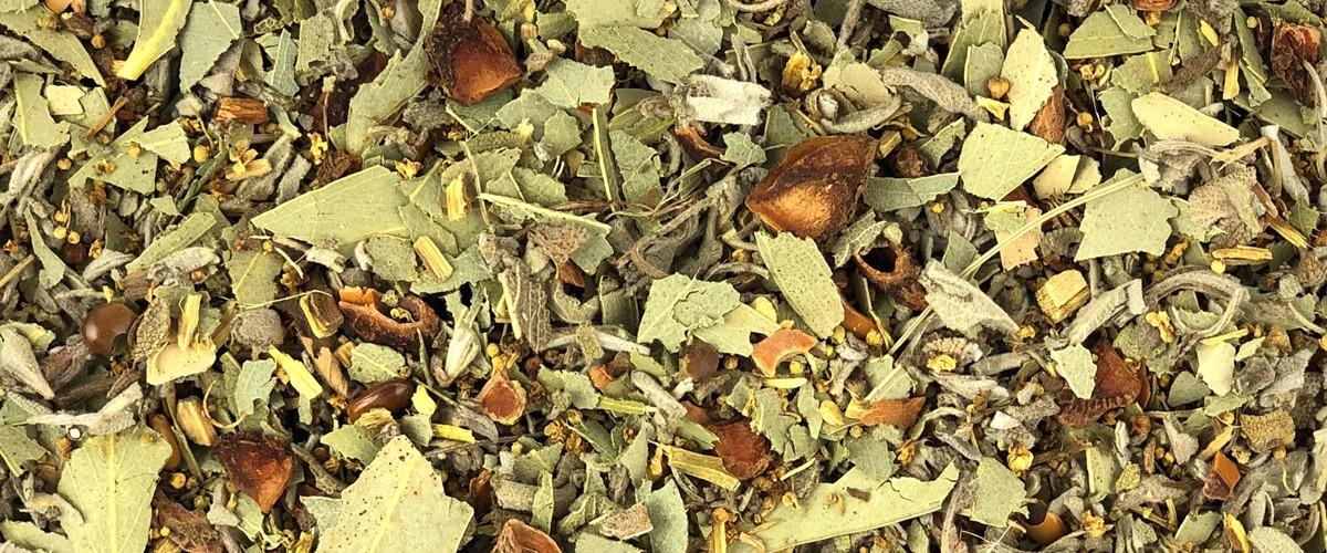 Tisane au parfum de garrigue
