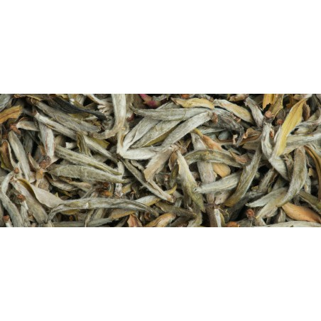 White tea from Vietnam...