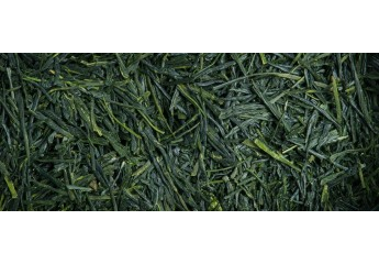 copy of Yabukita Sencha -...