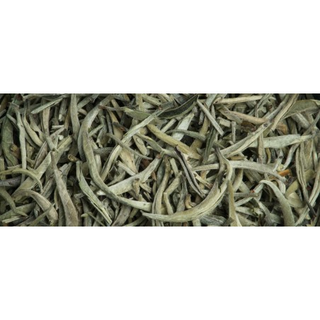 "White Tea ""Blanc Royal"""