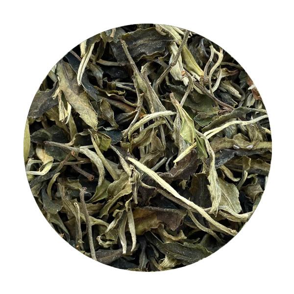 Thé blanc Lao Shu Baï Cha