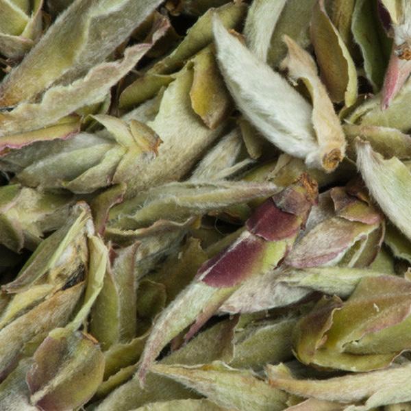 Thé blanc de bourgeons Nan Mei, Chine