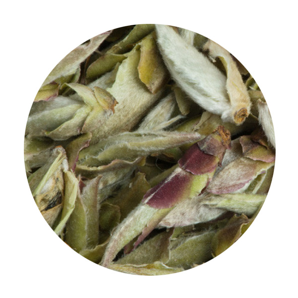 Thé blanc de Chine Bourgeons Nan Mei