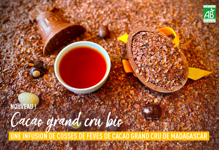 Nouvelle infusion : Cacao Grand Cru