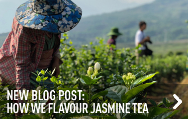 On our blog: flavouring jasmine tea