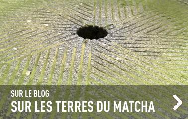Sur le blog : le matcha, épisode 2