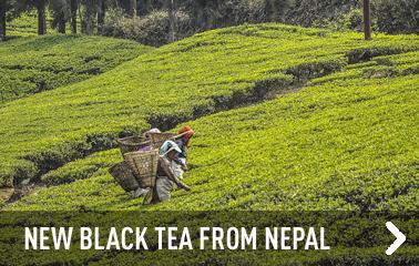 New plain black tea from Nepal