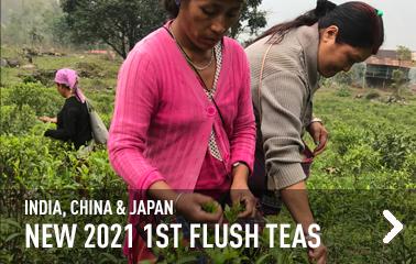 New first flush Longjing