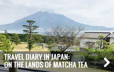 Carnet de voyage au Japon : sur les terres du Matcha