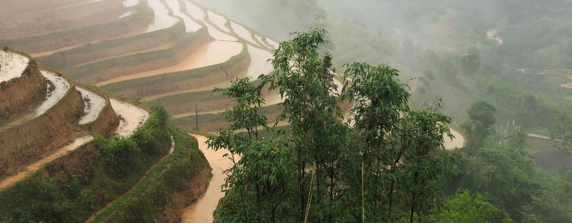 VIETNAM : fées et dragon